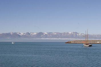 Islande : Húsavík, sortie en mer