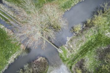 Drone Marais du Cotentin